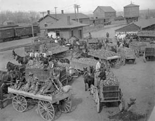 The freight house area in Tecumseh may have looked like this busy western town during harvest season.