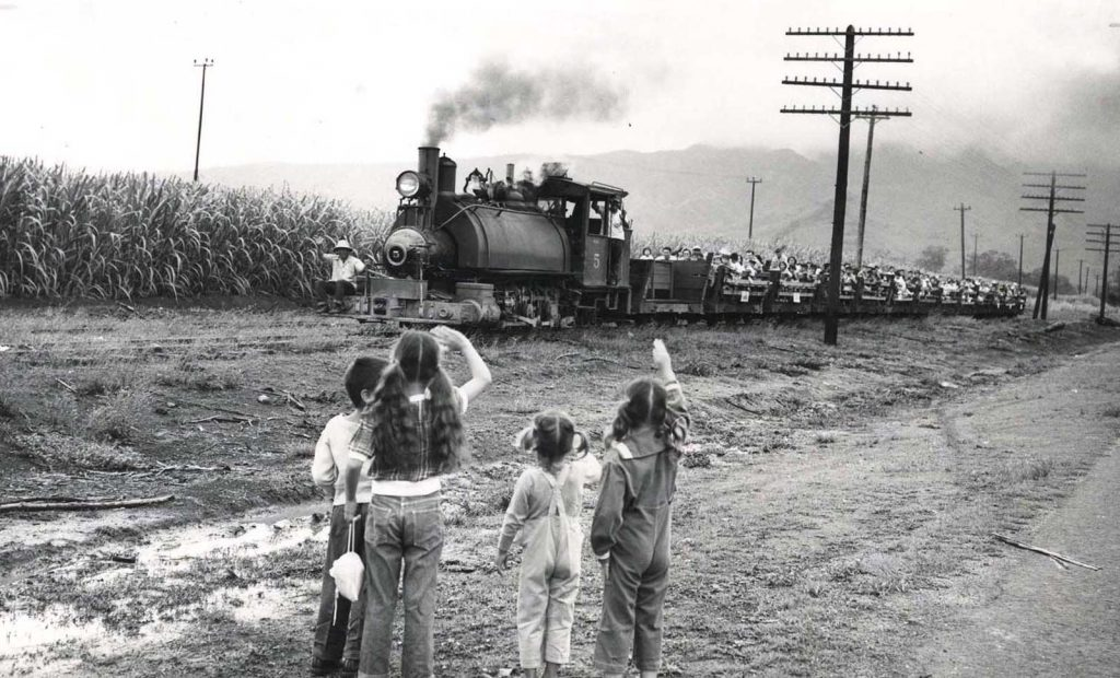 The Waialua Agriculture Company's #5 narrow-gauge train hauls a literal trainload of laborers to work in the company's sugar cane fields in the early 1950's as school-children wave to crew and passengers.